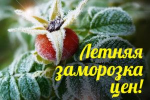 ЛЕТНЯЯ ЗАМОРОЗКА ЦЕН — НАБОР на сезон 2018-2019
